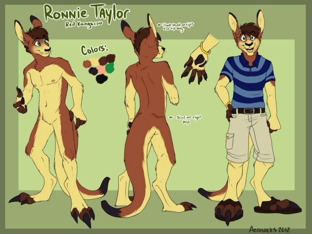 Ronnie Taylor - Reference by Aerosocks